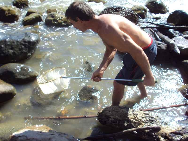 можно ли ловить сачком рыбу