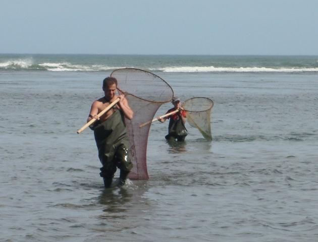 5 браконьеров, незаконно ловивших рыбу и креветок, задержаны в Запорожской и Луганской областях - Цензор.НЕТ 233