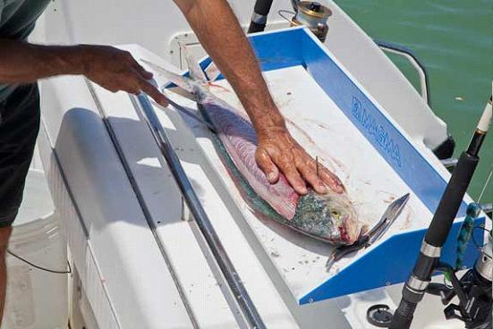 способы рыбалки на чёрном море с берега