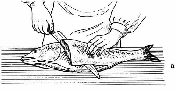 Рис. №9 Общая последовательность снятия филе у широкоспинных рыб (дорада, тунец, язь, семга)